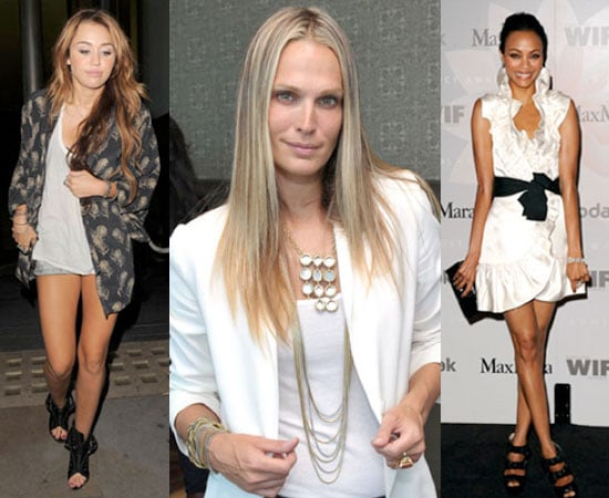 Celebrity Fashion Quiz 2010-06-05 15:26:22