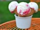 Raspberry-Swirl Greek Frozen Yogurt
