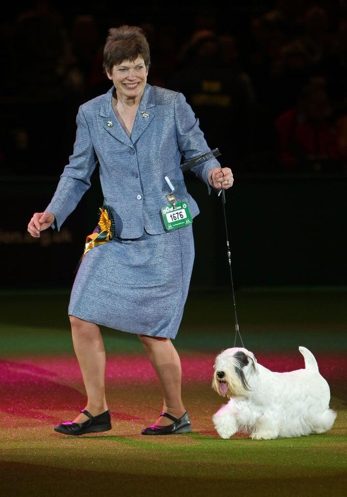 Chamin Wins the 2009 Crufts Dog Show!