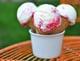 Greek Frozen Yogurt With Raspberry Swirl