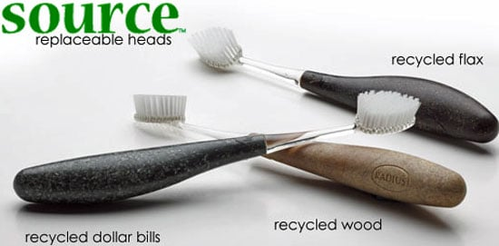 Recycled Dollar Bill Toothbrush