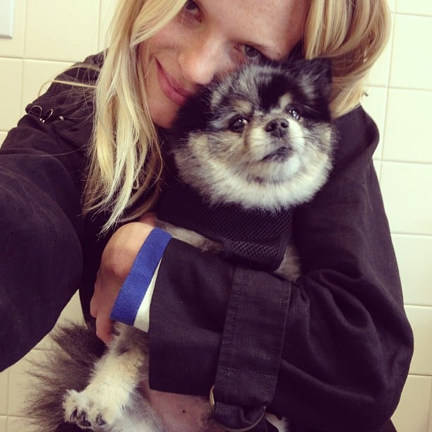 Anne V. has an extremely cute companion in her little dog, Anchovy (Chovy for short). Source: Instagram user annev_official