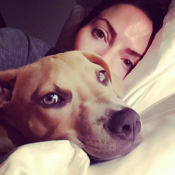 Whitney Cummings snuggled in bed with her pooch. Source: Instagram user whitneyacummings
