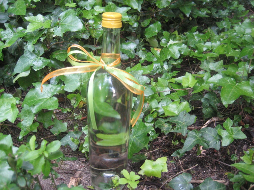 Go Green! Turn Old Wine Bottles Into Water Holders