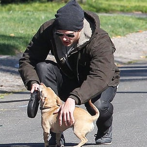 Pictures of Kellan Lutz and His Dogs in LA