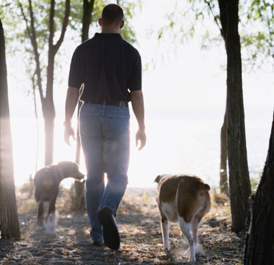 Do Tell: Can Your Dogs Play Off-Leash?