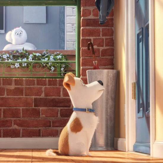 The Secret Life of Pets Review