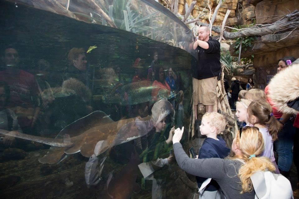 National Aquarium — Baltimore