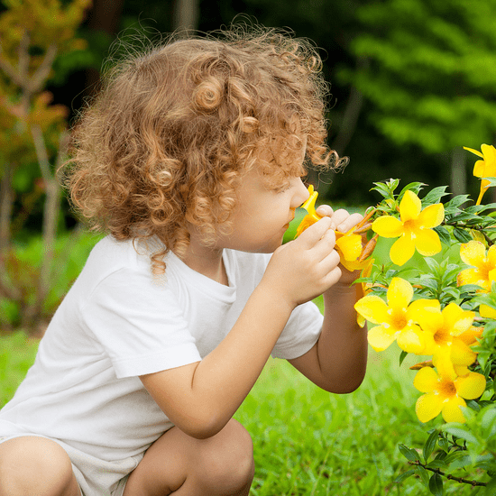 How to Raise a Well-Balanced Kid