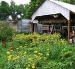 10 Great Urban Farms Across the United States