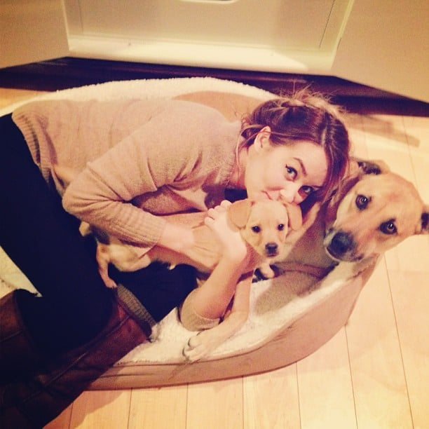 Lauren snuggled up with her pups.  Source: Instagram user laurenconrad