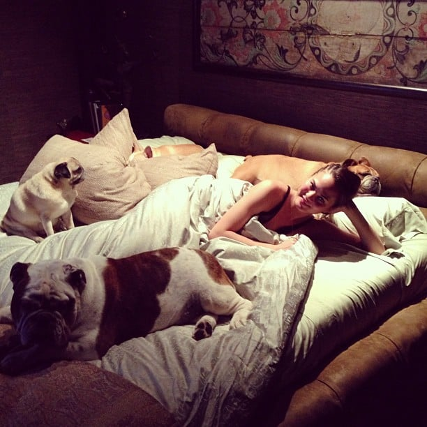 Chrissy Teigen was excited to return home and relax with her pups. Source: Instagram user chrissyteigen