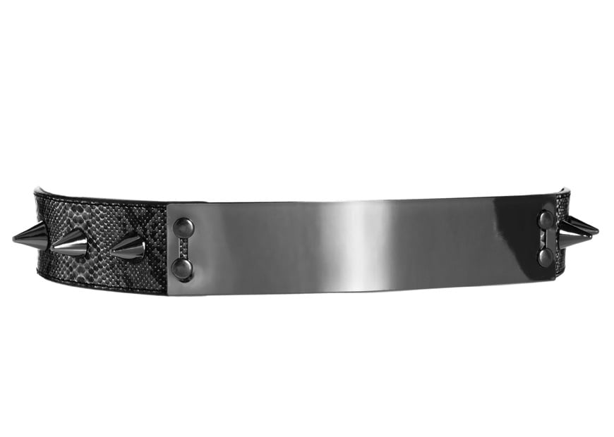 Cameron Diaz's spiked belt made us yearn for one, too. Alas, we settled on this ASOS snake plate and spike belt ($25), which is punk, luxe, and futuristic all rolled into one.