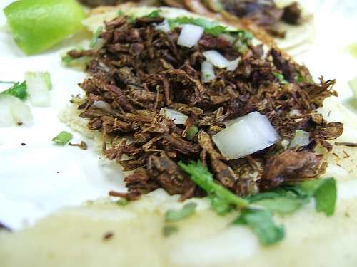 Would You Eat This Chapulines Taco?
