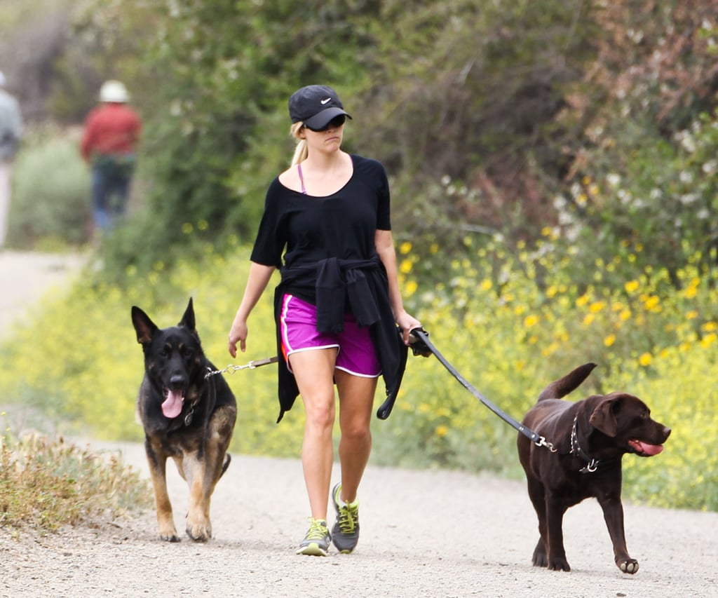 Reese Witherspoon walked her dogs in LA.