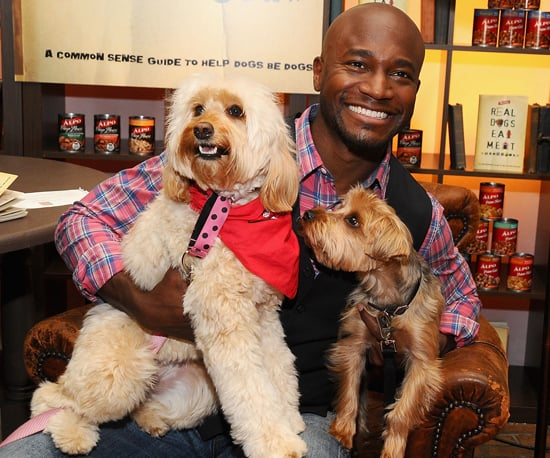 Pictures of Taye Diggs at Real Dogs Eat Meat Event in NYC