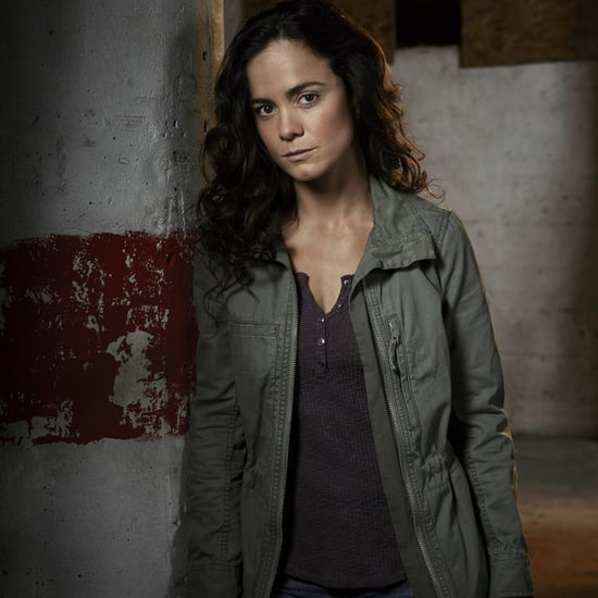 Who Is Alice Braga?