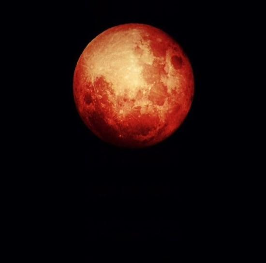 October 2014 Blood Moon Photo