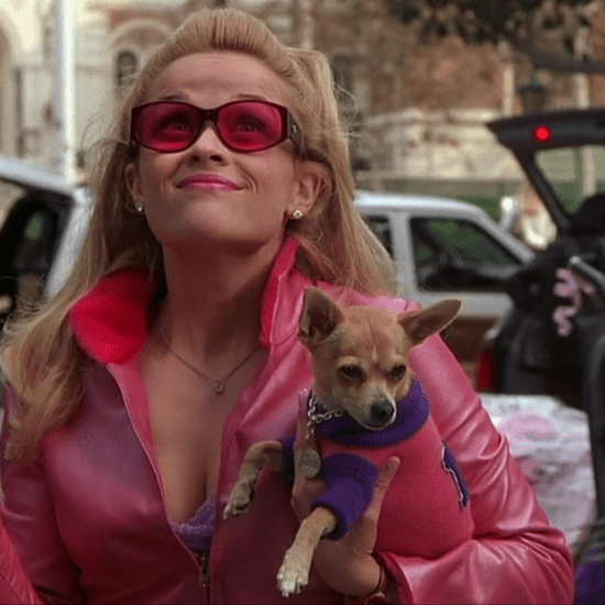 Bruiser Woods From Legally Blonde Has Died (Video)