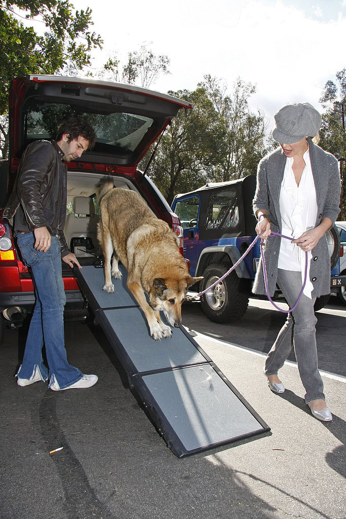Katherine, Josh, and Furry Crew Take a Walk