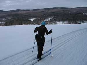 Cross-Country Skiing Tip: Stay in the Tracks