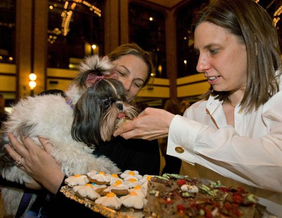 Globetrotters: Sugar & Champagne Affair in D.C.