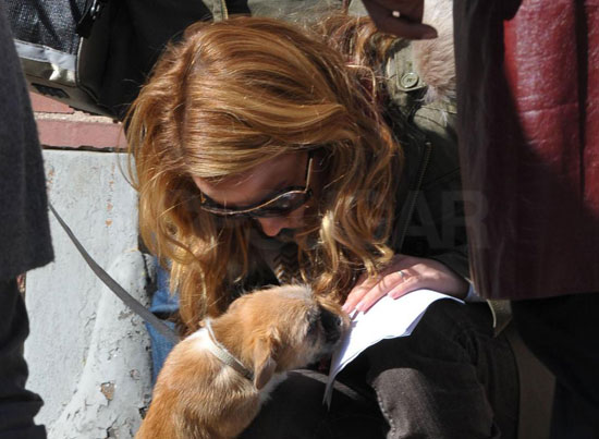 Guess Who's With a Cute Puppy on Set?