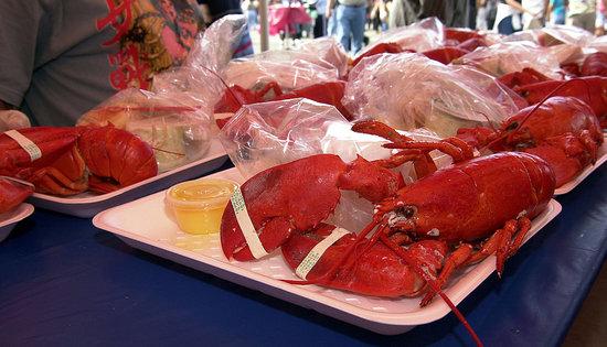 "Plunging Lobster Prices Have Been ""Devastating"""