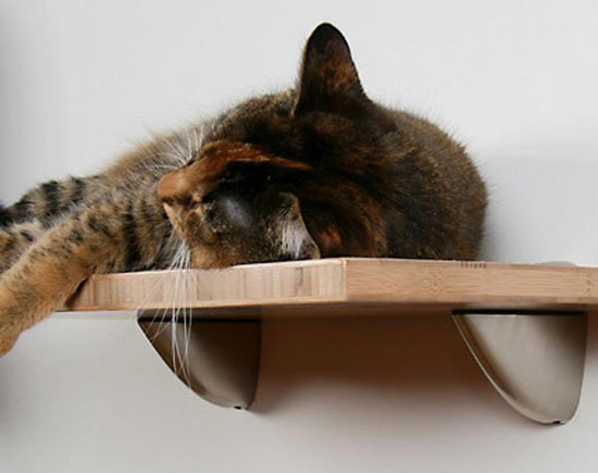 Bamboo Cat Shelves From Feel More Human and Square Cat Habitat