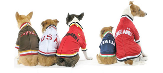 Let Your Sporty Pet Support the Euro 2008 Final in Style!