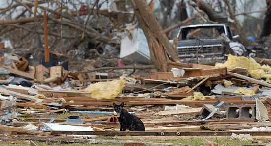 Huge Storms In Iowa and Minnesota Kill Eight