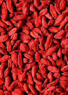 Definition of Goji Berry
