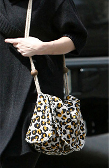 Guess Which Vegetarian Actress Was Carrying This Bag?