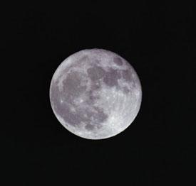 Mommy Dearest: Do Full Moons Bring on Labor?