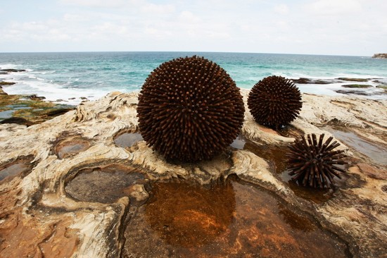 """""""Urchins"""" by Kelly Ann Lees at 2008 Sculpture by the Sea in Sydney, Australia"""