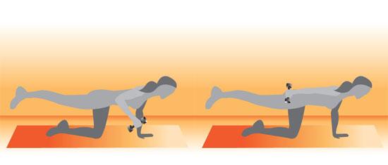 Balancing Triceps Kickback Exercise