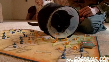 Cats Suck at Playing Board Games