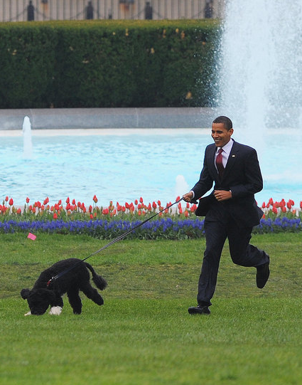 Front Page: The Obamas Unveil The Family Dog