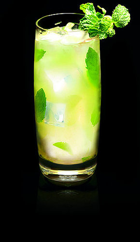TY KU 100 Calorie Super Fruit Mojito