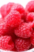 Fruit :