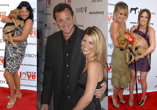 Celebs Love Playboy And Puppies