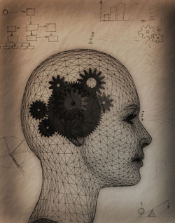 Epilepsy Myth