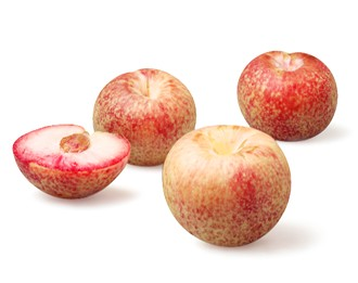 What Do You Know About Pluots?