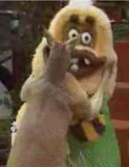 Kangaroo Vs. Mascot