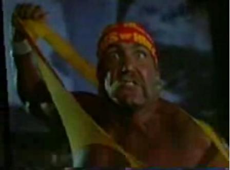 Flashback: Hogan Knows Best