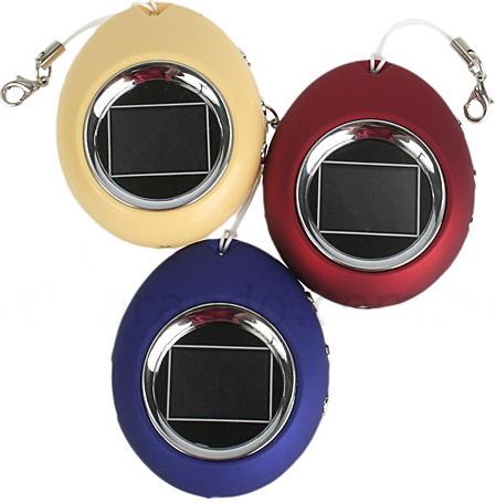 The Oval Digital Photo Keychain