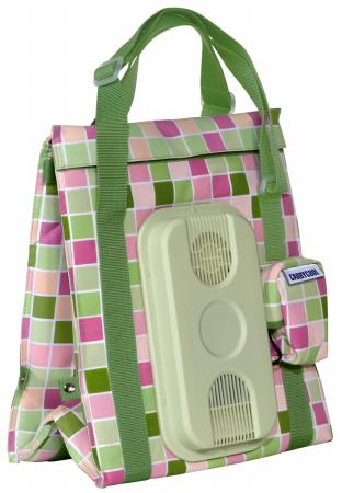 The Stylish Carrycool Bag