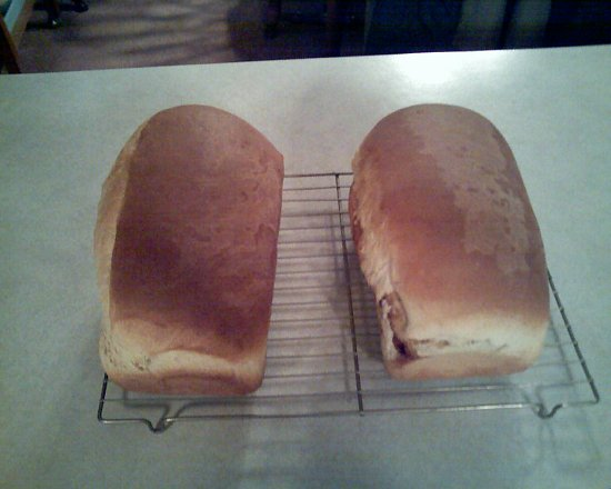 Homemade Amish Bread