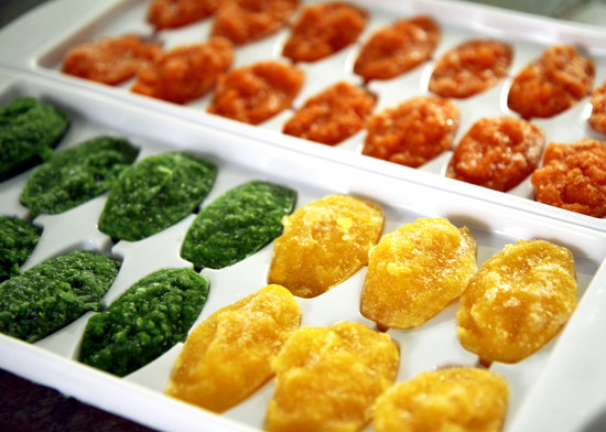 Easy Pureed Baby Food Recipes