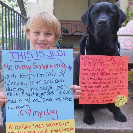 Luke and Jedi Diabetes Service Dog